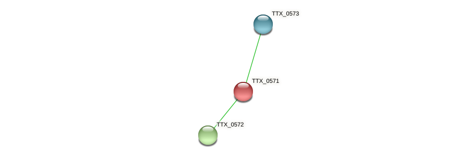 TTX_0571 protein (Thermoproteus tenax) - STRING interaction network