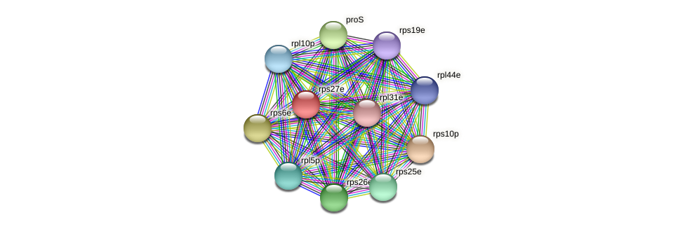 rps27e protein (Thermoproteus tenax) - STRING interaction network