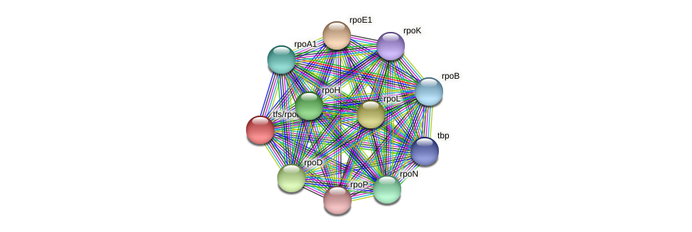 tfs protein (Thermoproteus tenax) - STRING interaction network