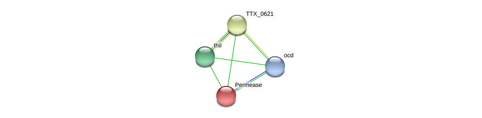 TTX_0622 protein (Thermoproteus tenax) - STRING interaction network