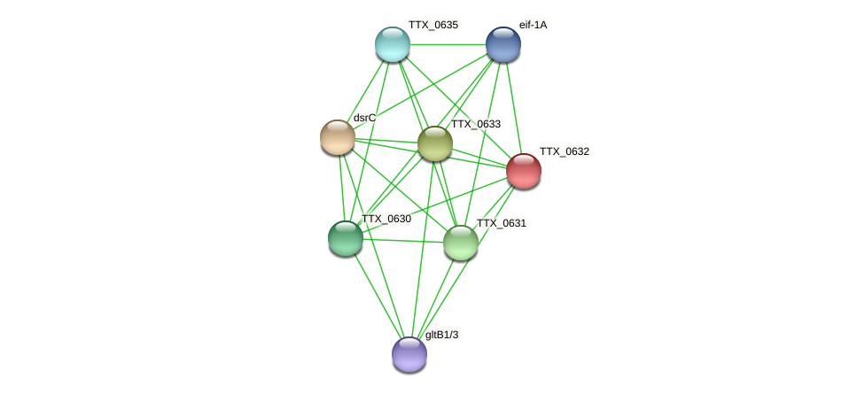 TTX_0632 protein (Thermoproteus tenax) - STRING interaction network