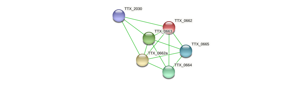 TTX_0662 protein (Thermoproteus tenax) - STRING interaction network