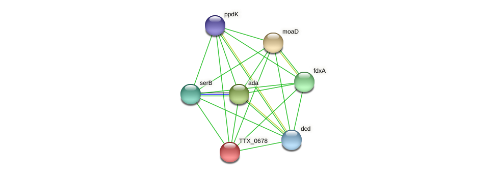 TTX_0678 protein (Thermoproteus tenax) - STRING interaction network