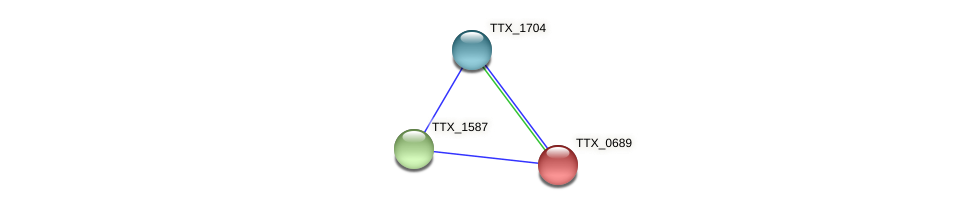 TTX_0689 protein (Thermoproteus tenax) - STRING interaction network