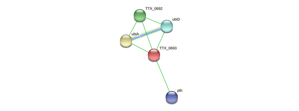 TTX_0693 protein (Thermoproteus tenax) - STRING interaction network