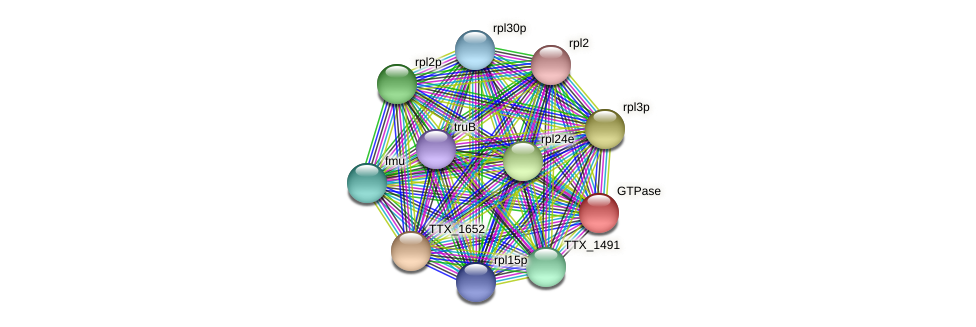 TTX_0735 protein (Thermoproteus tenax) - STRING interaction network