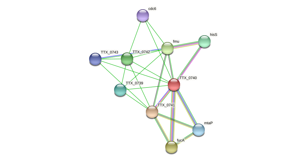 TTX_0740 protein (Thermoproteus tenax) - STRING interaction network