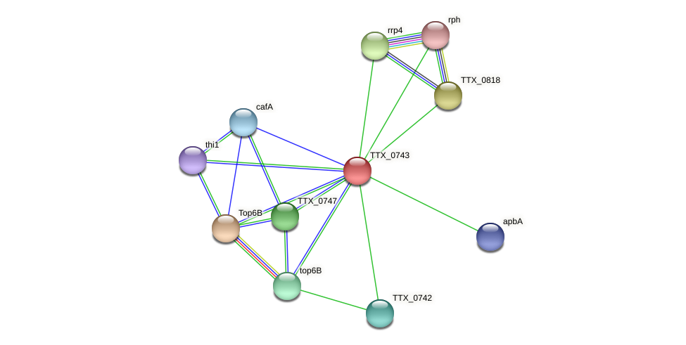 TTX_0743 protein (Thermoproteus tenax) - STRING interaction network