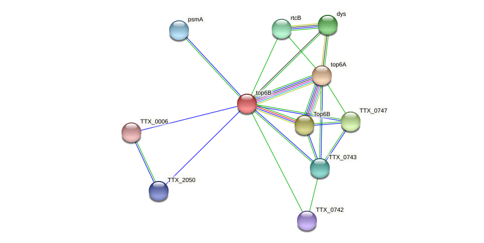 TTX_0744 protein (Thermoproteus tenax) - STRING interaction network