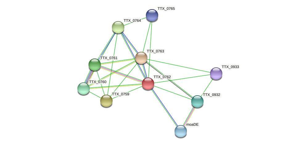 TTX_0762 protein (Thermoproteus tenax) - STRING interaction network
