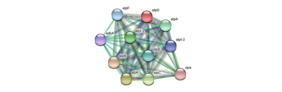 atpD protein (Thermoproteus tenax) - STRING interaction network