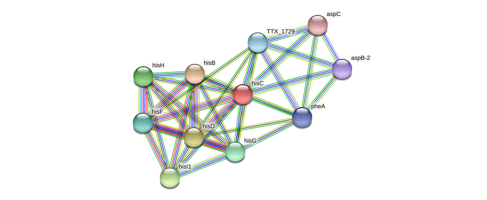 hisC protein (Thermoproteus tenax) - STRING interaction network