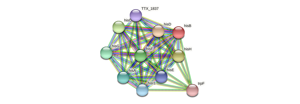 hisB protein (Thermoproteus tenax) - STRING interaction network