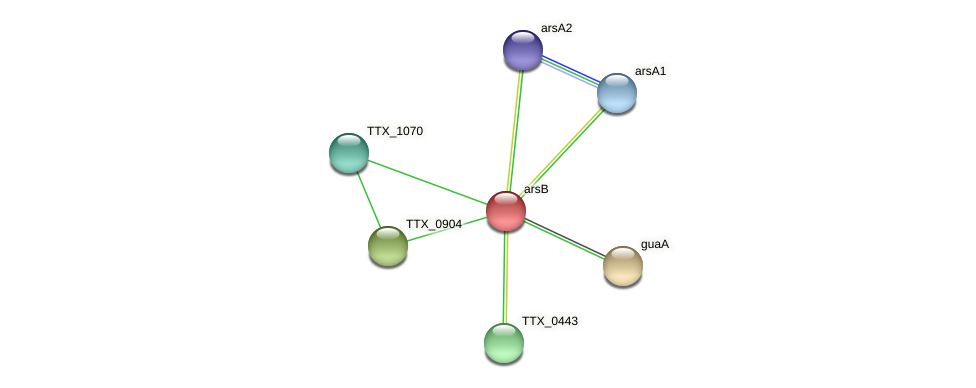 arsB protein (Thermoproteus tenax) - STRING interaction network