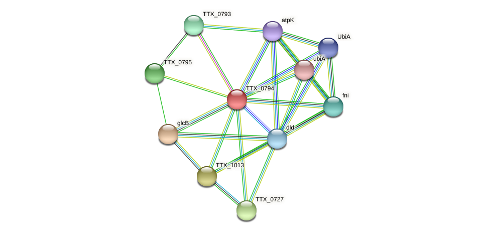 TTX_0794 protein (Thermoproteus tenax) - STRING interaction network