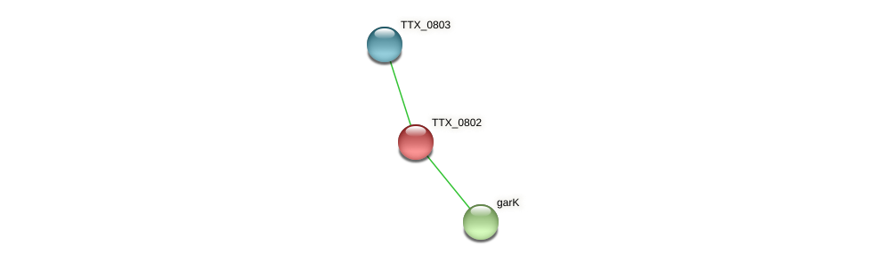 TTX_0802 protein (Thermoproteus tenax) - STRING interaction network