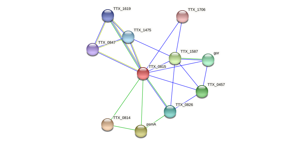 TTX_0815 protein (Thermoproteus tenax) - STRING interaction network