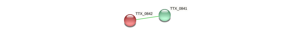 TTX_0842 protein (Thermoproteus tenax) - STRING interaction network