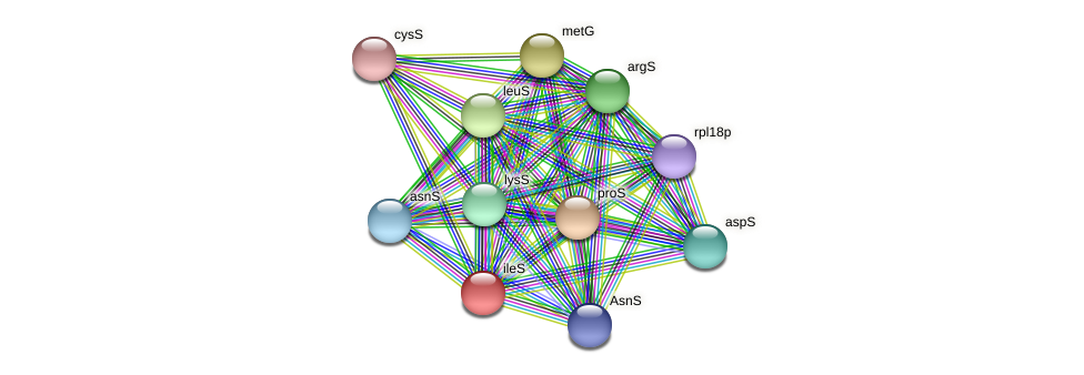 ileS protein (Thermoproteus tenax) - STRING interaction network