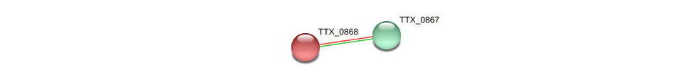 TTX_0868 protein (Thermoproteus tenax) - STRING interaction network