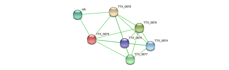 TTX_0879 protein (Thermoproteus tenax) - STRING interaction network