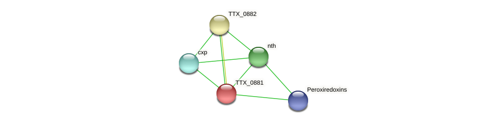 TTX_0881 protein (Thermoproteus tenax) - STRING interaction network