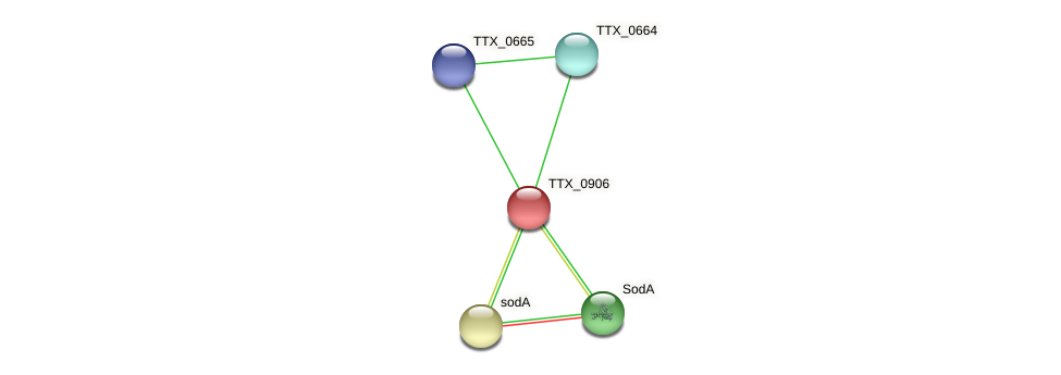 TTX_0906 protein (Thermoproteus tenax) - STRING interaction network