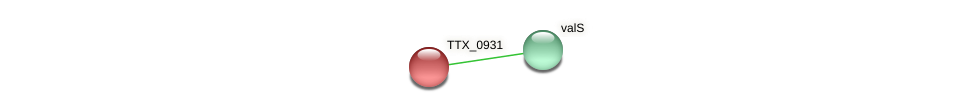 TTX_0931 protein (Thermoproteus tenax) - STRING interaction network