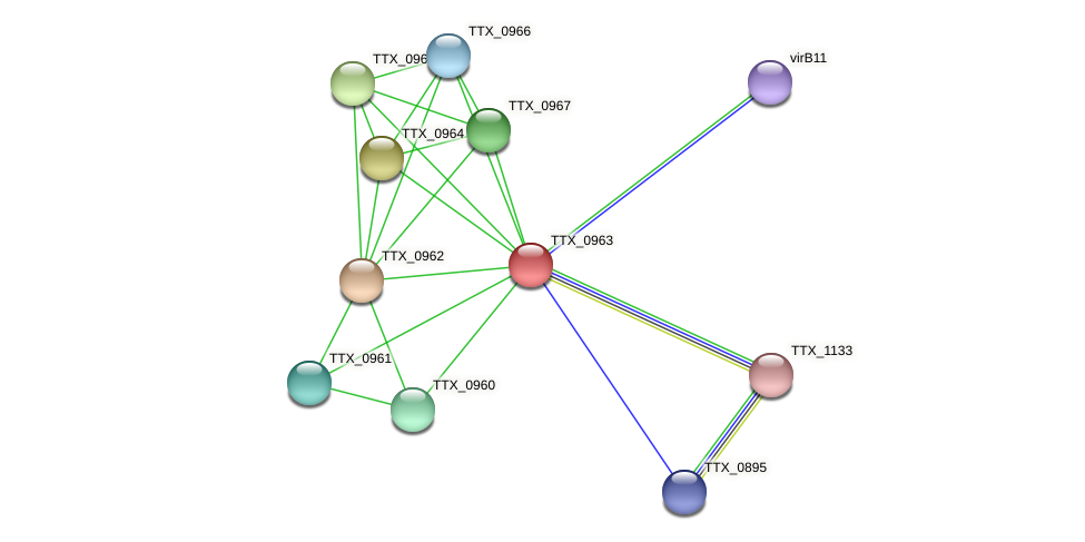 TTX_0963 protein (Thermoproteus tenax) - STRING interaction network