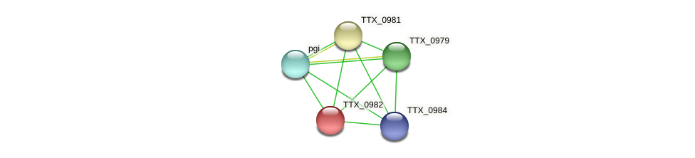 TTX_0982 protein (Thermoproteus tenax) - STRING interaction network