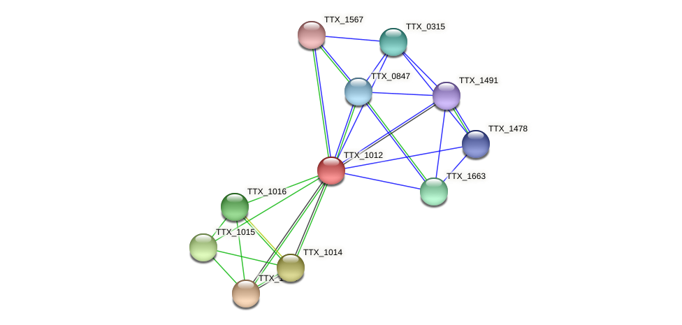 TTX_1012 protein (Thermoproteus tenax) - STRING interaction network