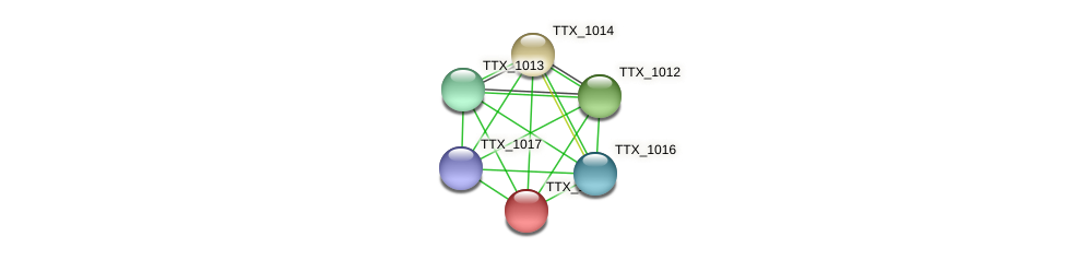 TTX_1015 protein (Thermoproteus tenax) - STRING interaction network