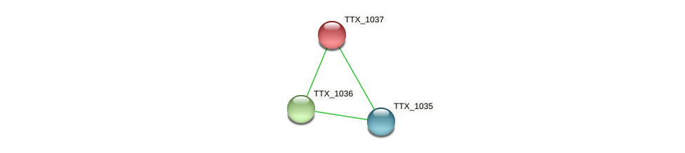 TTX_1037 protein (Thermoproteus tenax) - STRING interaction network