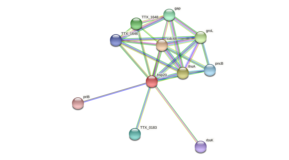 hsp20 protein (Thermoproteus tenax) - STRING interaction network