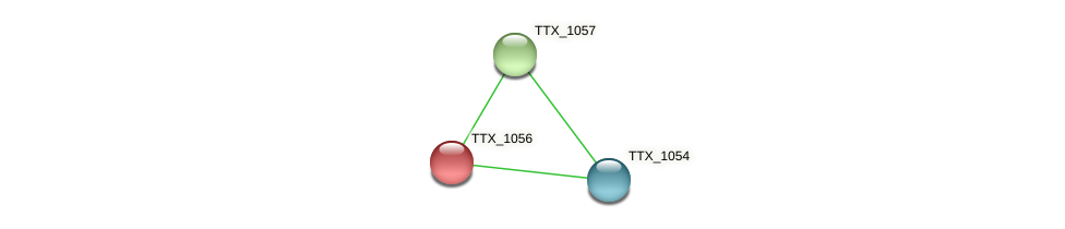 TTX_1056 protein (Thermoproteus tenax) - STRING interaction network