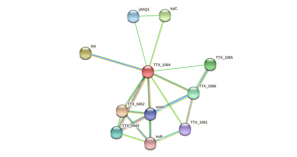 TTX_1064 protein (Thermoproteus tenax) - STRING interaction network