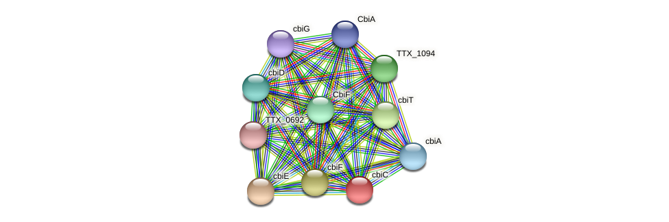 cbiC protein (Thermoproteus tenax) - STRING interaction network