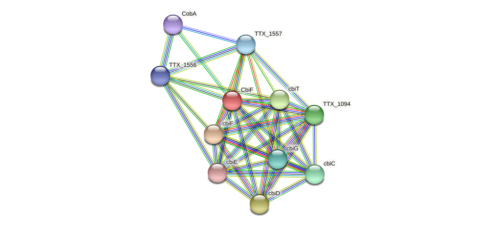 TTX_1093 protein (Thermoproteus tenax) - STRING interaction network