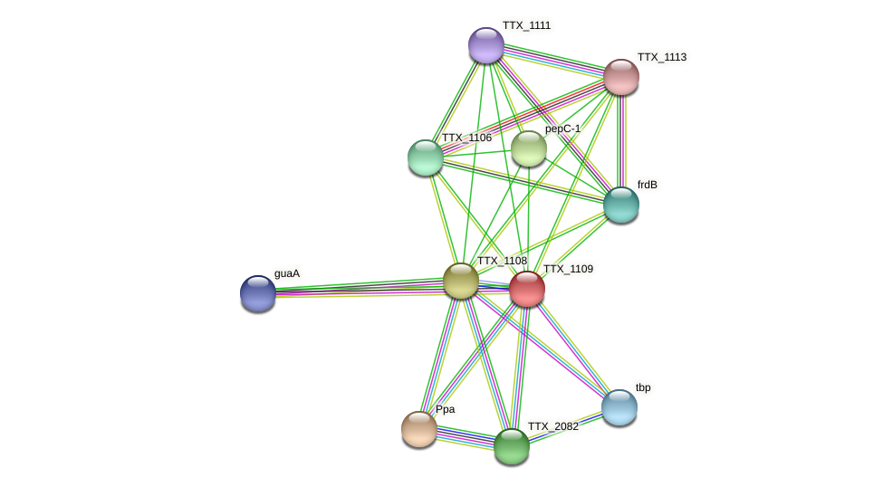 TTX_1109 protein (Thermoproteus tenax) - STRING interaction network