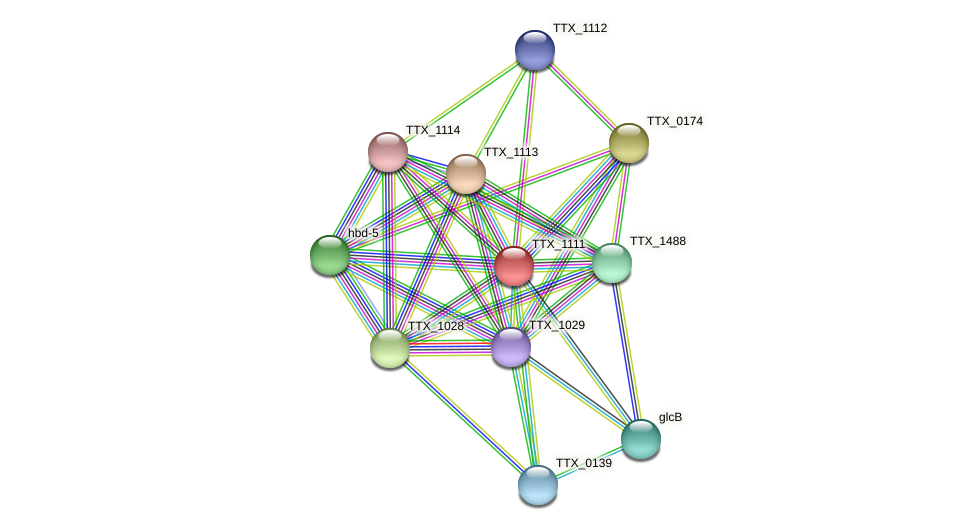 TTX_1111 protein (Thermoproteus tenax) - STRING interaction network
