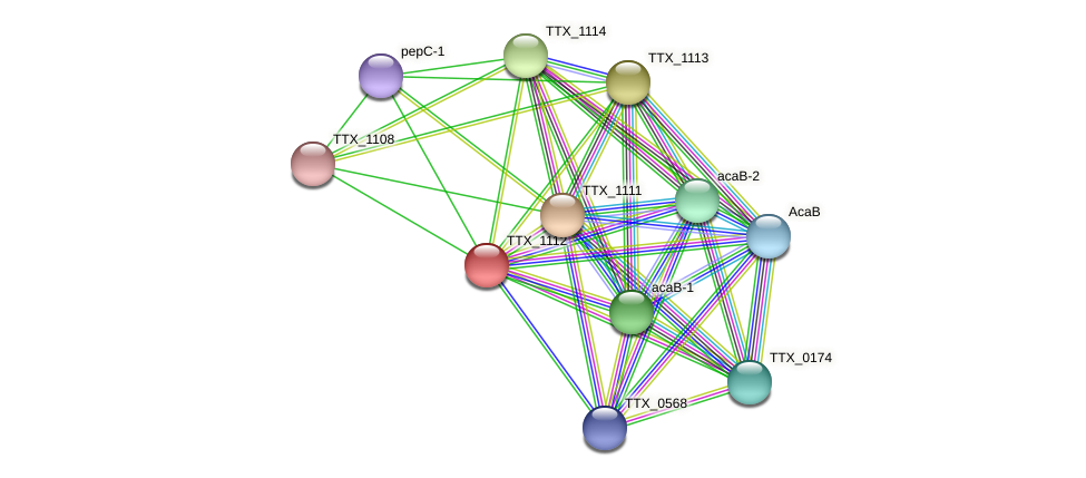TTX_1112 protein (Thermoproteus tenax) - STRING interaction network