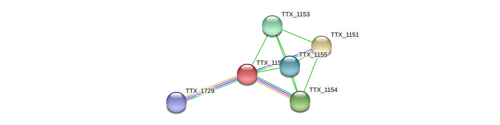 TTX_1152 protein (Thermoproteus tenax) - STRING interaction network
