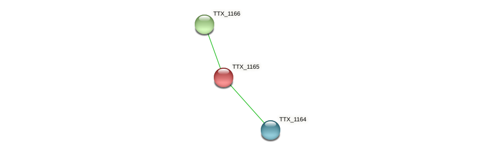 TTX_1165 protein (Thermoproteus tenax) - STRING interaction network