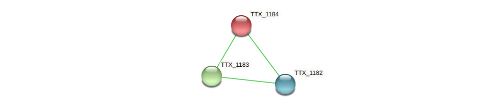 TTX_1184 protein (Thermoproteus tenax) - STRING interaction network
