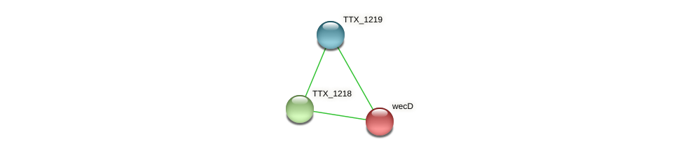 wecD protein (Thermoproteus tenax) - STRING interaction network