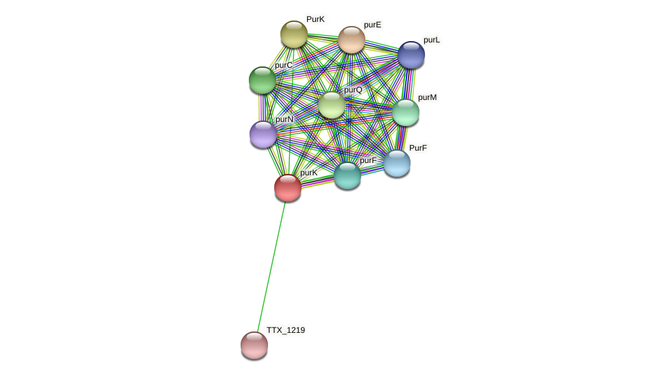 TTX_1220 protein (Thermoproteus tenax) - STRING interaction network