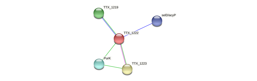 TTX_1222 protein (Thermoproteus tenax) - STRING interaction network