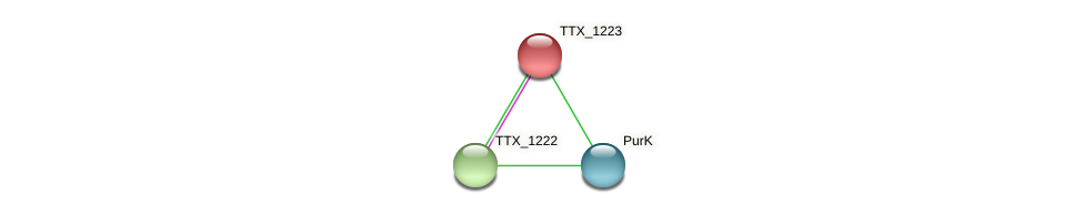 TTX_1223 protein (Thermoproteus tenax) - STRING interaction network