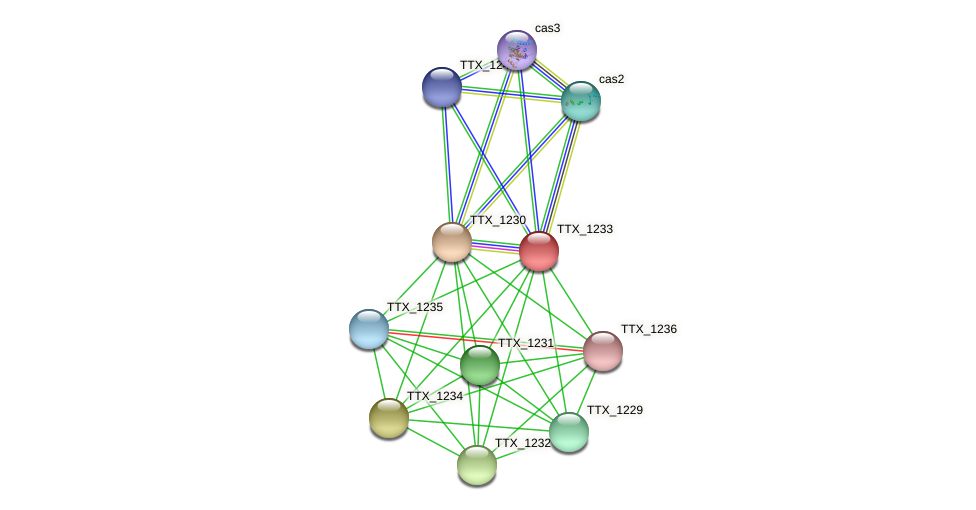 TTX_1233 protein (Thermoproteus tenax) - STRING interaction network
