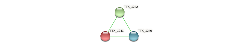 TTX_1241 protein (Thermoproteus tenax) - STRING interaction network